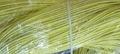 канитель жесткая лимонная 1,3мм 1,2мм